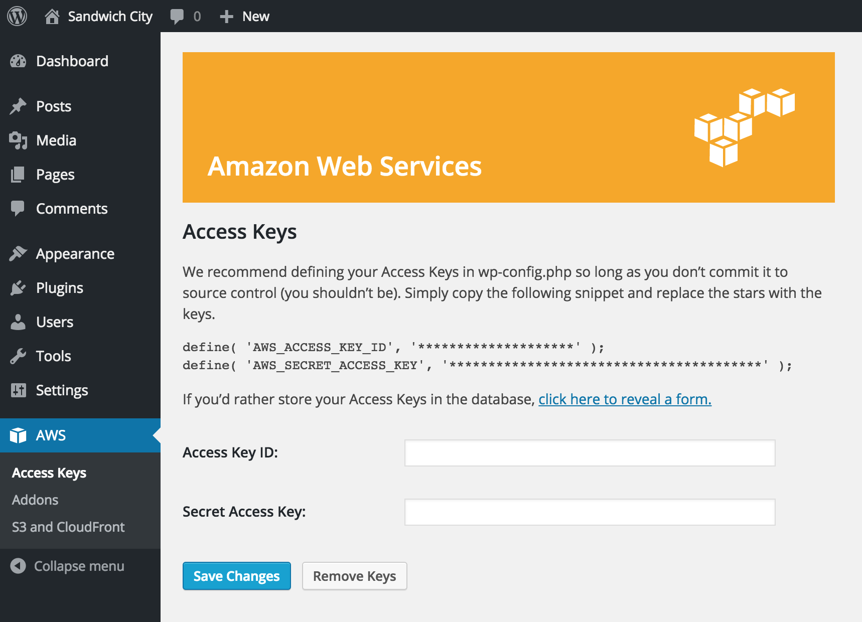 Amazon Web Services Download Free Wordpress Plugin 4