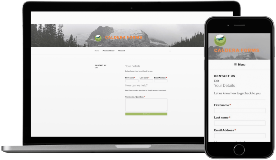 Caldera Forms – More Than Contact Forms Download Free Wordpress Plugin 3