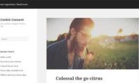 Cookie Consent Download Free WordPress Plugin