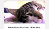 Featured Video Plus Download Free WordPress Plugin
