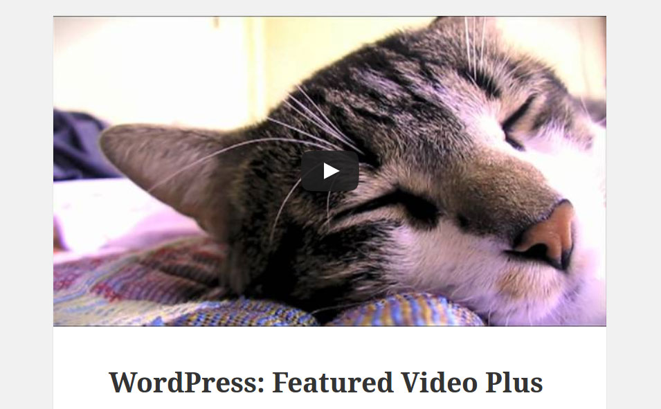 Featured Video Plus Download Free Wordpress Plugin 5