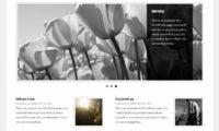 Get the Image Download Free WordPress Plugin
