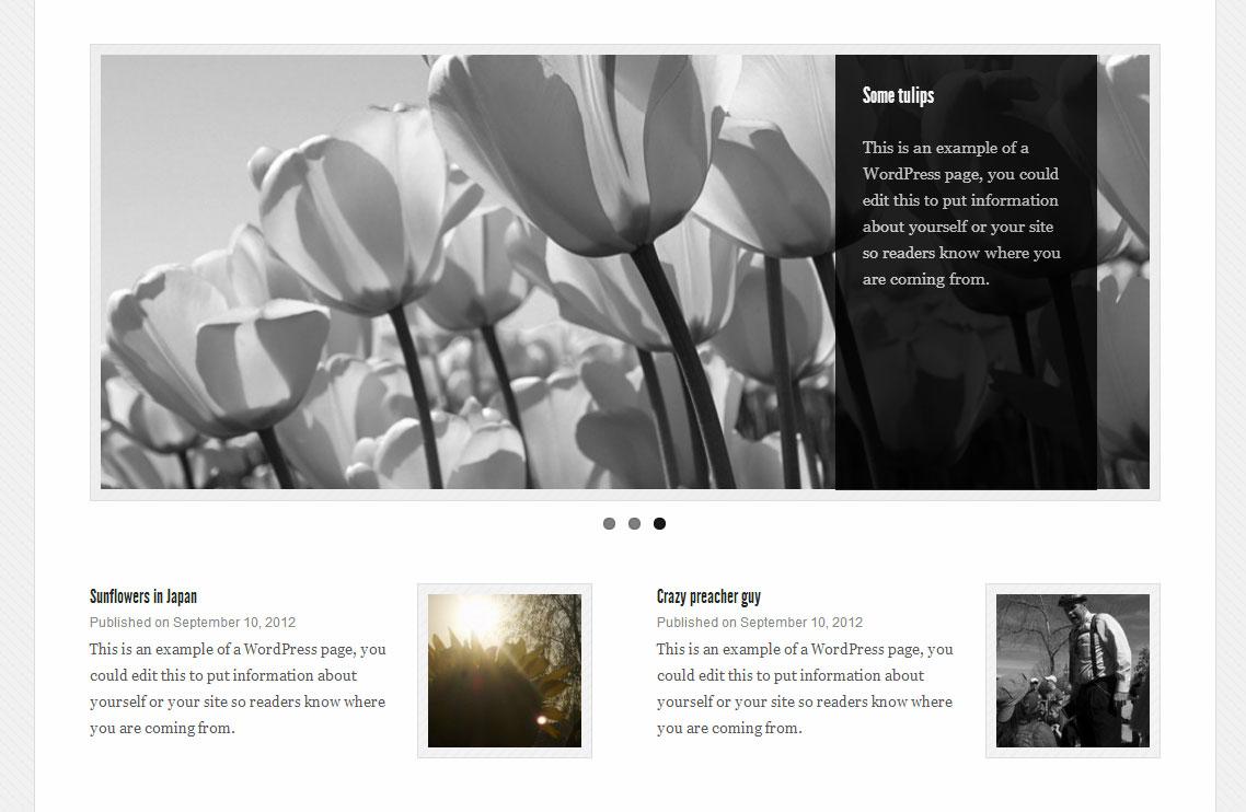 Get the Image Download Free Wordpress Plugin 3