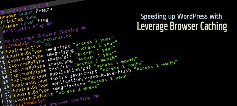 Leverage Browser Caching Download Free Wordpress Plugin 5