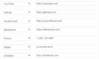 Lightweight Social Icons Download Free WordPress Plugin