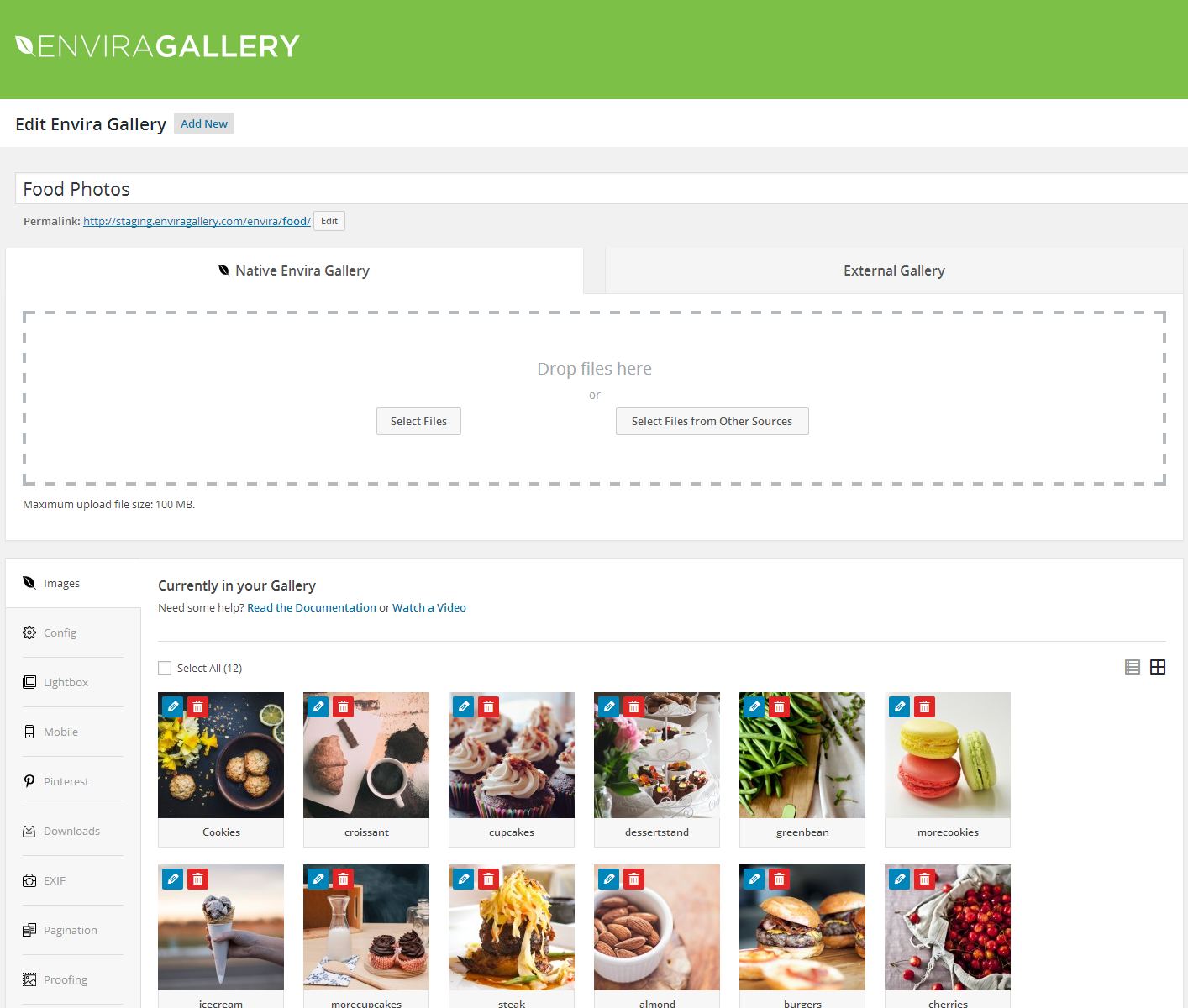 Photo Gallery by Envira – Responsive Image Gallery for WordPress Download Free Wordpress Plugin 4