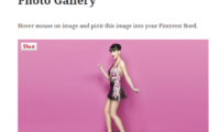 Pinterest Pin It Button On Image Hover And Post Download Free WordPress Plugin