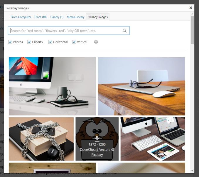 Pixabay Images Download Free Wordpress Plugin 3