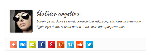 Simple Author Box Download Free Wordpress Plugin 1