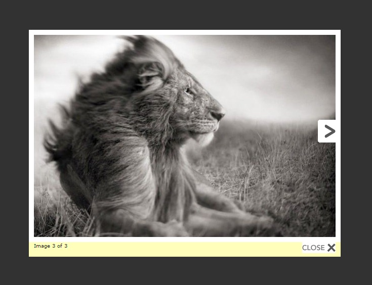 WP Lightbox 2 Download Free Wordpress Plugin 2