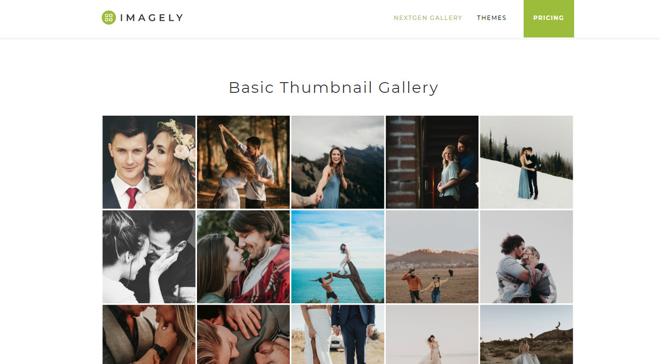WordPress Gallery Plugin – NextGEN Gallery Download Free Wordpress Plugin 3