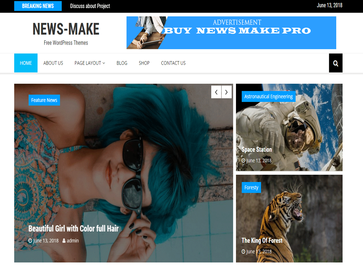 News Make Download Free Wordpress Theme 3
