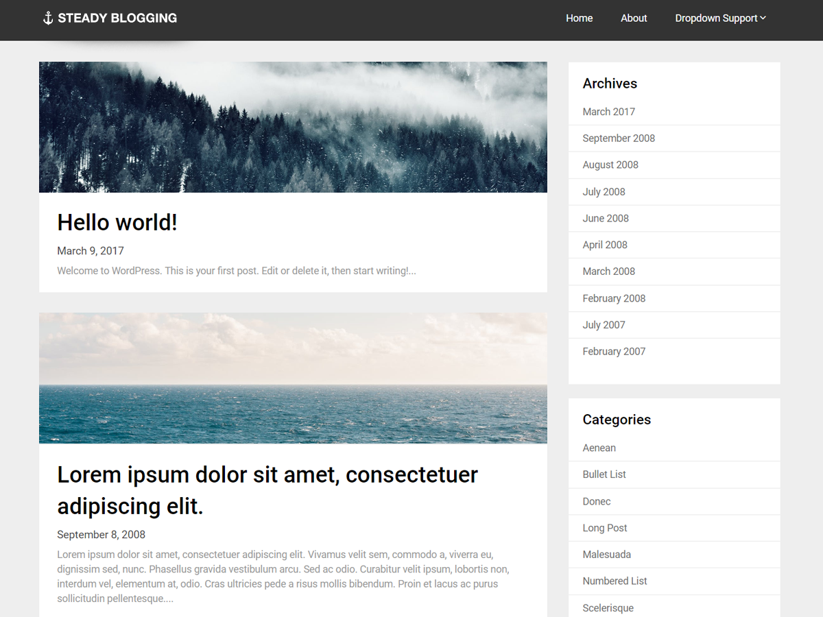 Steady Blogging Download Free Wordpress Theme 1