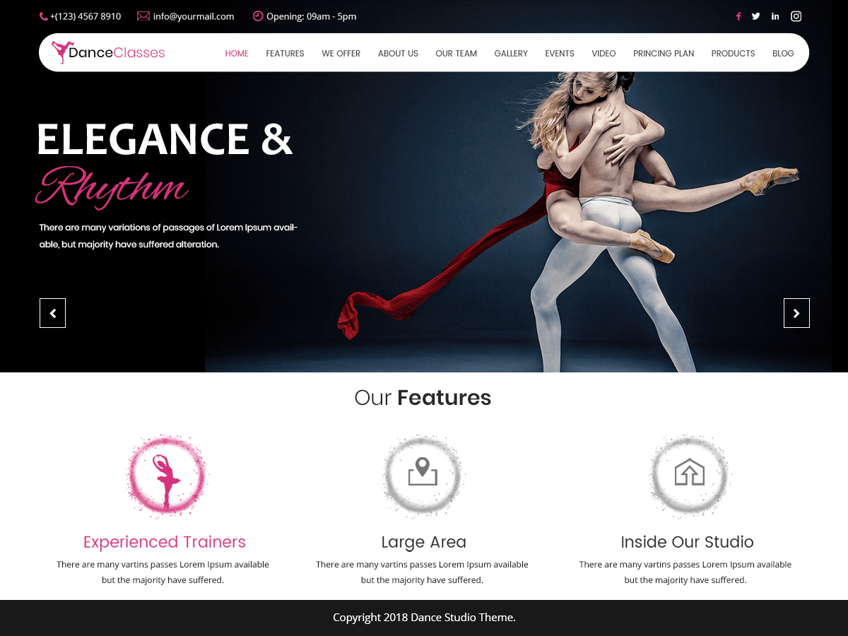 Nataraj Dance Studio Download Free Wordpress Theme 2