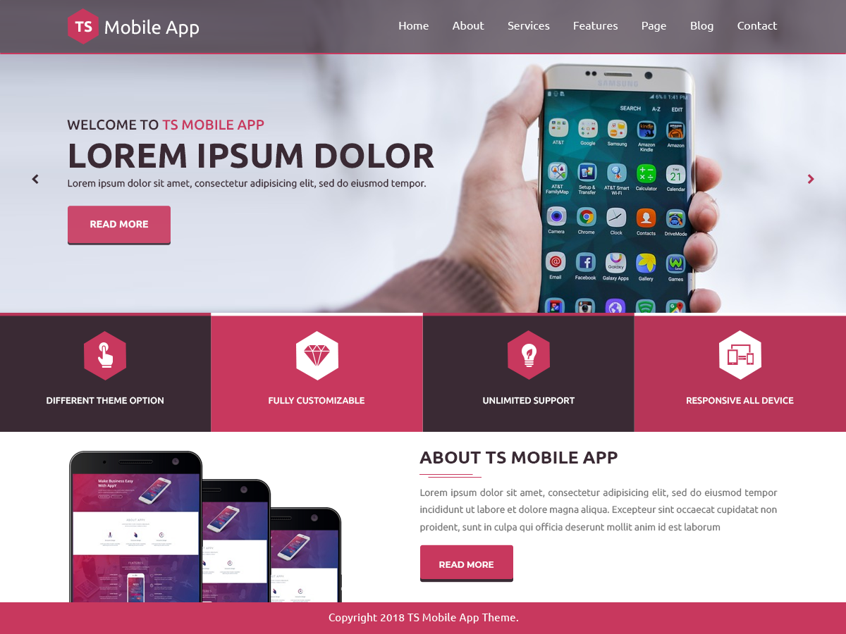 TS Mobile App Download Free Wordpress Theme 3