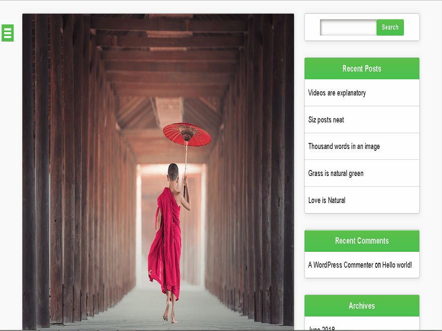 Pikaxo Download Free Wordpress Theme 3