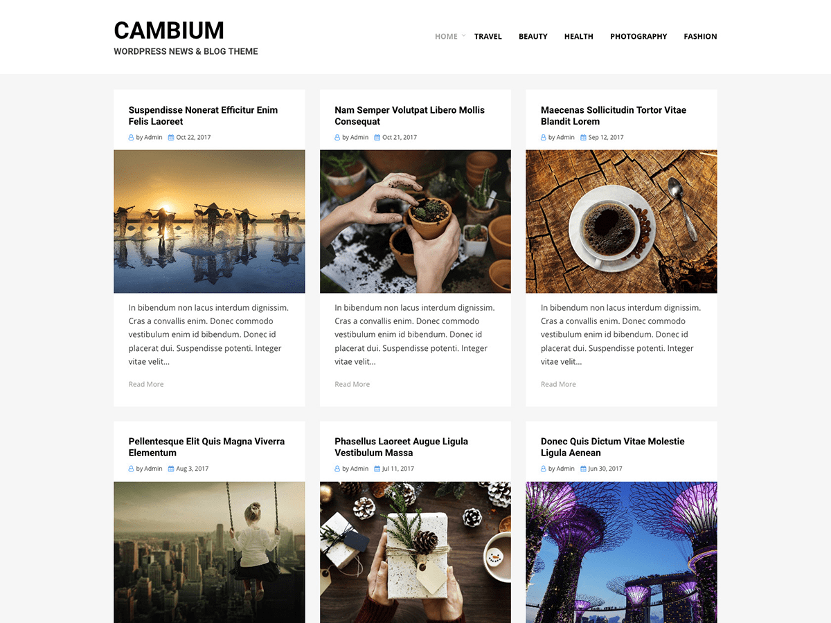 Cambium Download Free Wordpress Theme 3