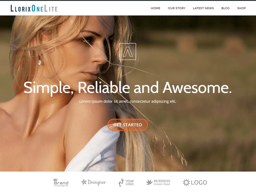 Llorix One Lite Download Free Wordpress Theme 2