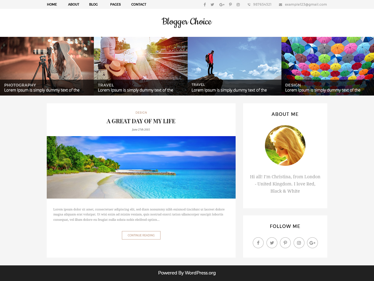 Blogger Choice Download Free Wordpress Theme 2