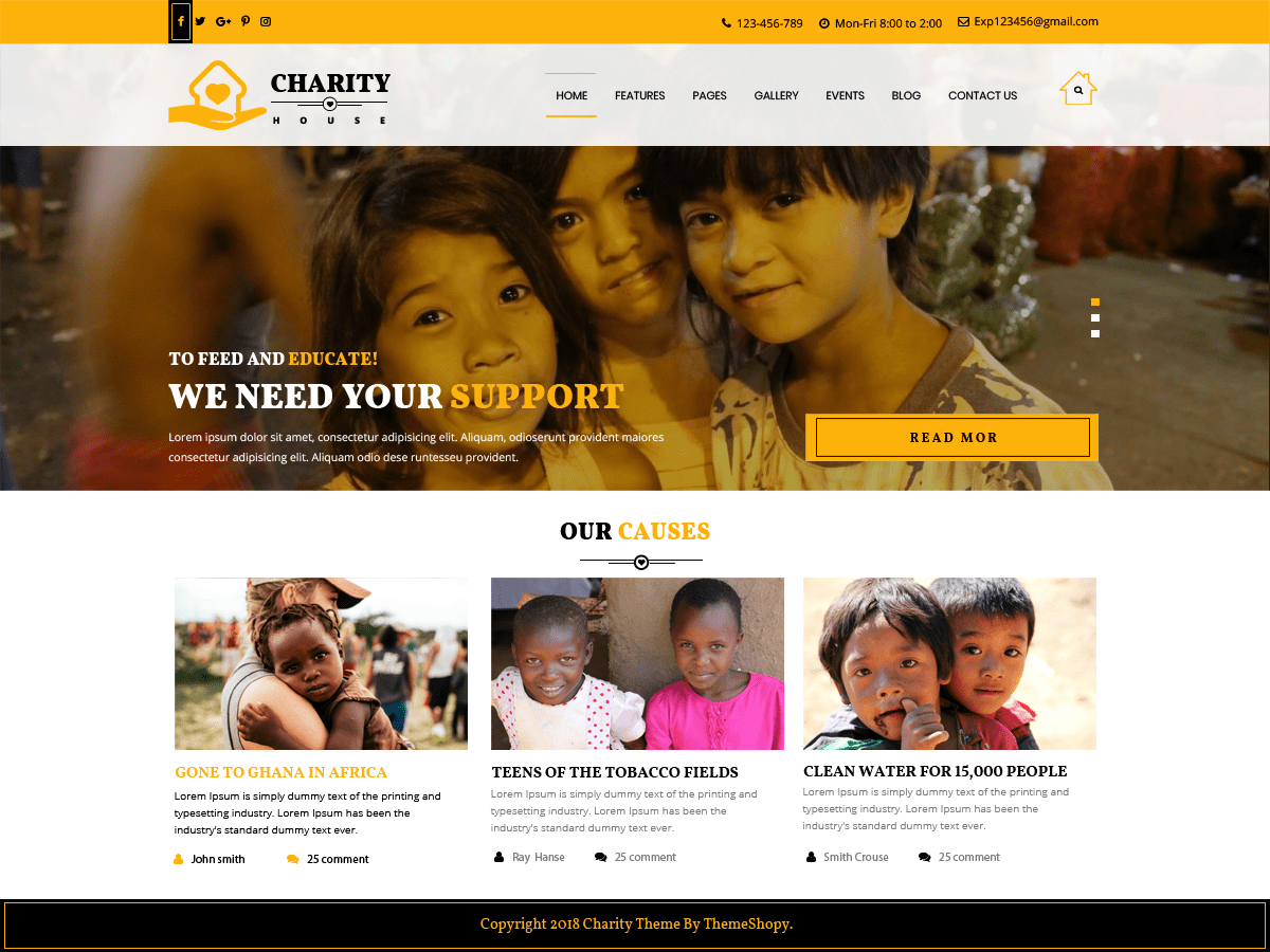 TS Charity Download Free Wordpress Theme 1