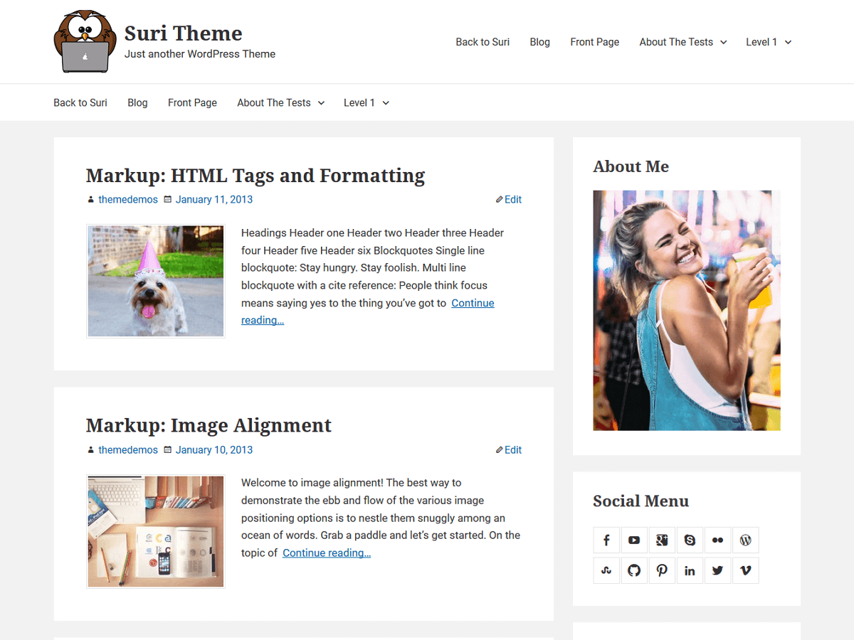 Suri Download Free Wordpress Theme 5