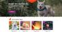 VW Pet Shop Download Free WordPress Theme