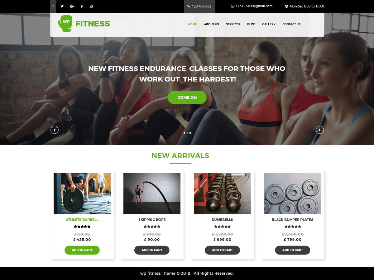 Core Fitness Download Free Wordpress Theme 4