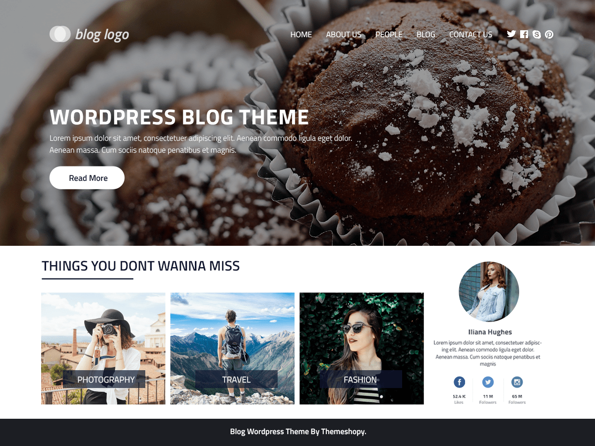 Perfect Blog Download Free Wordpress Theme 3