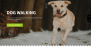 My Dog Lite Download Free WordPress Theme