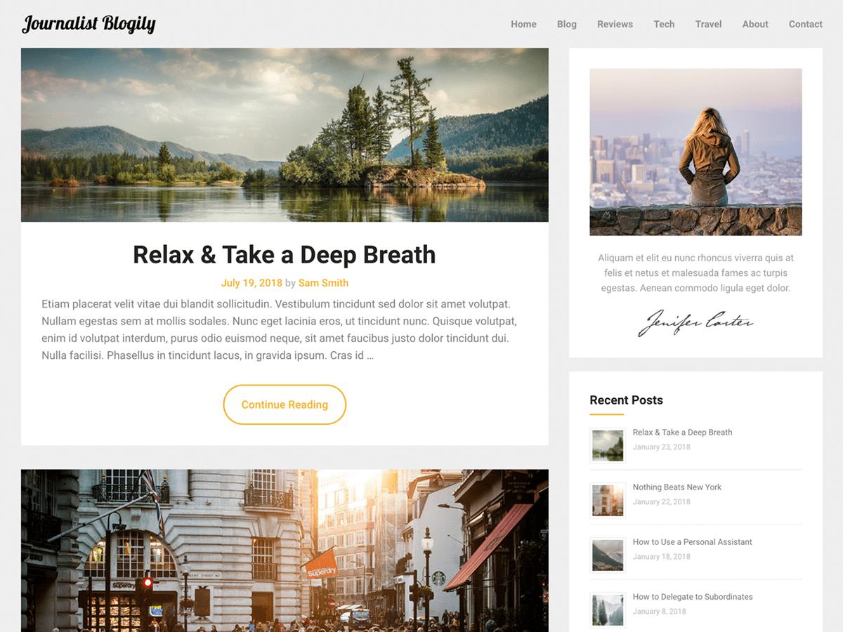 JournalistBlogily Download Free Wordpress Theme 5