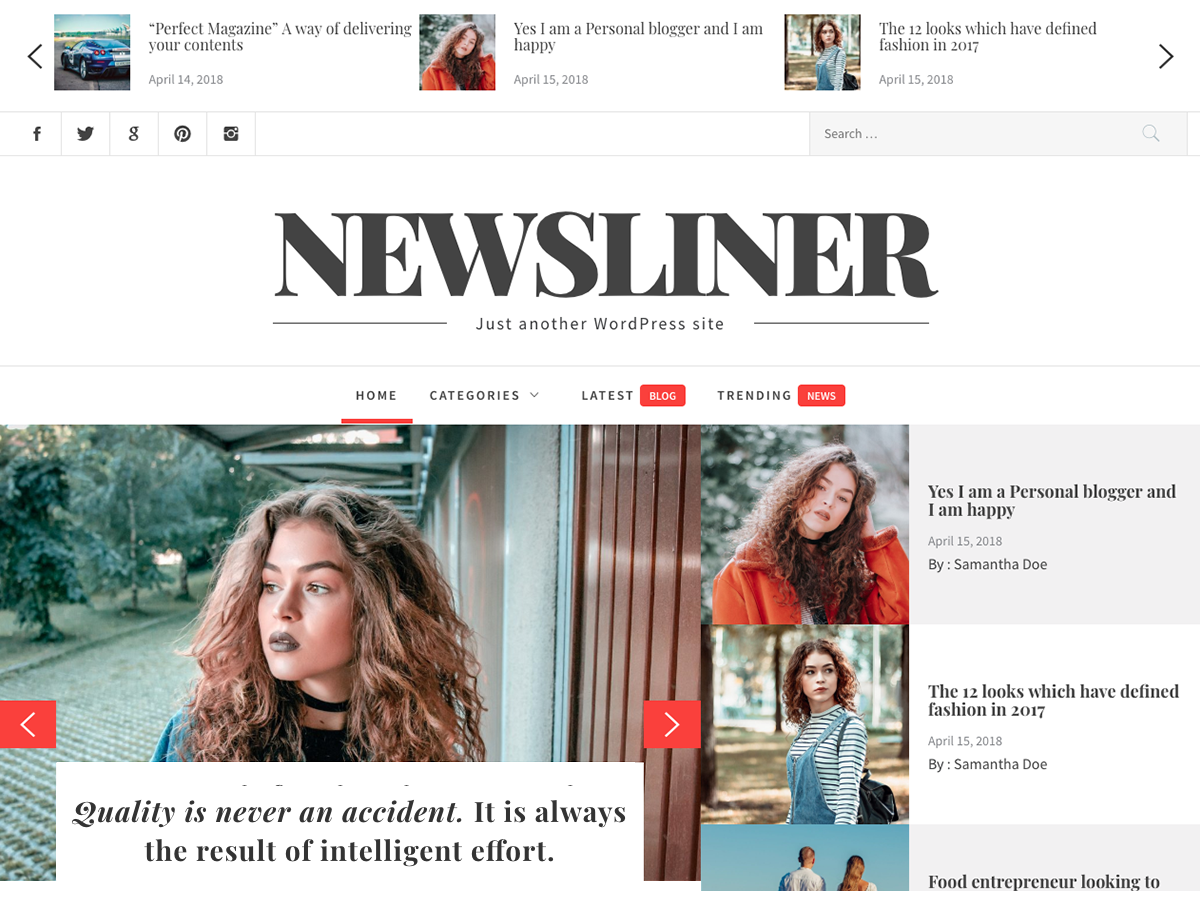 Newsliner Download Free Wordpress Theme 5