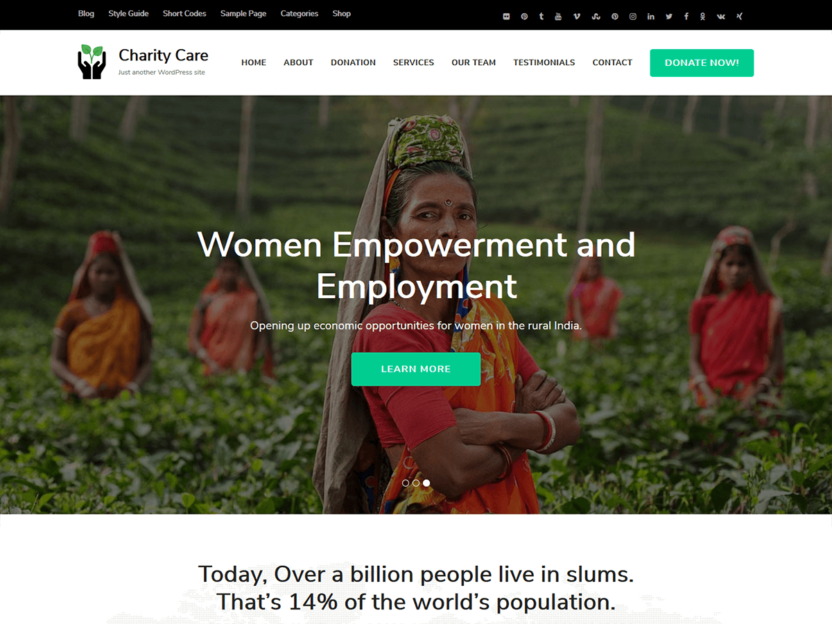 Charity Care Download Free Wordpress Theme 1