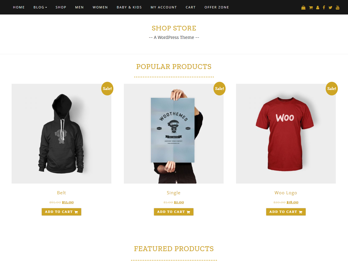 Shop Store Download Free Wordpress Theme 1