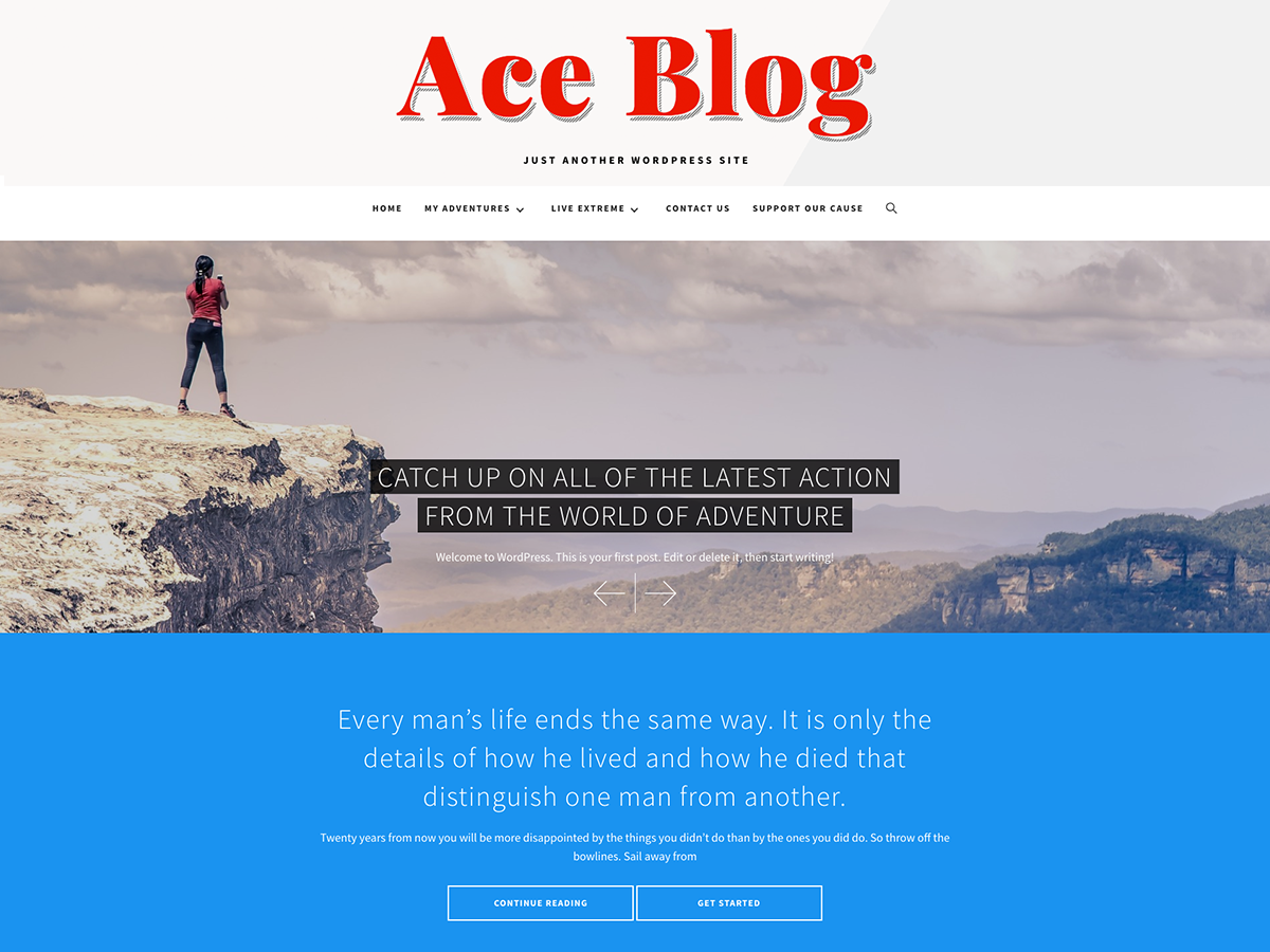 Ace Blog Download Free Wordpress Theme 2