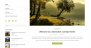 Openness Download Free WordPress Theme