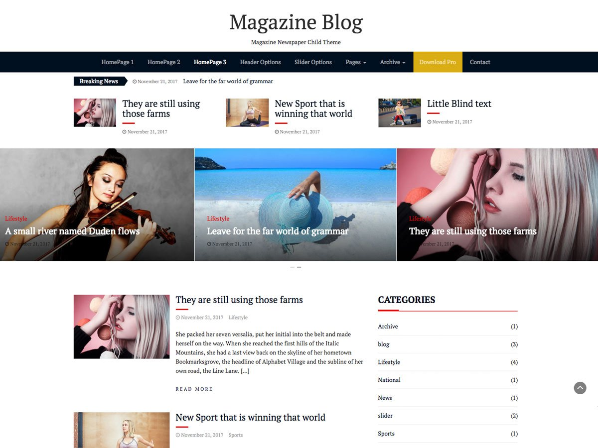 Magazine Blog Download Free Wordpress Theme 1
