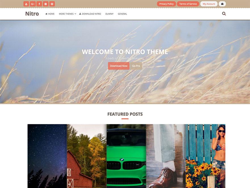 Nitro Download Free Wordpress Theme 3
