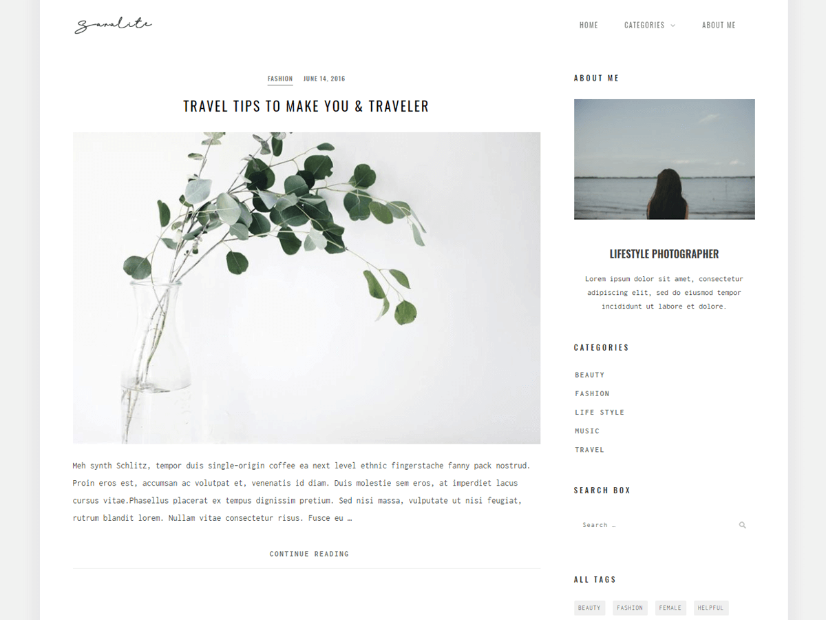 SaraLite Download Free WordPress Theme