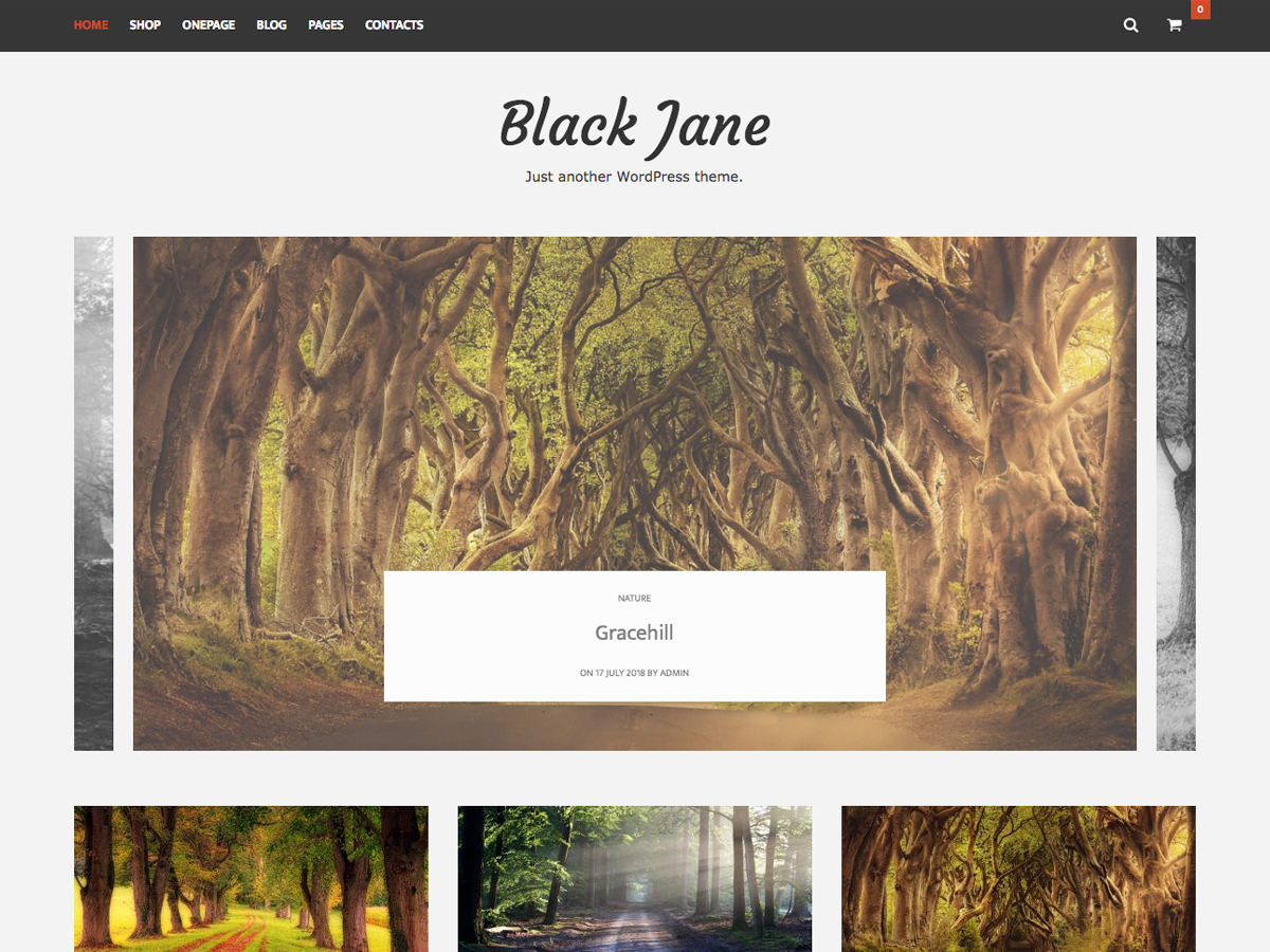 Black Jane Download Free Wordpress Theme 2
