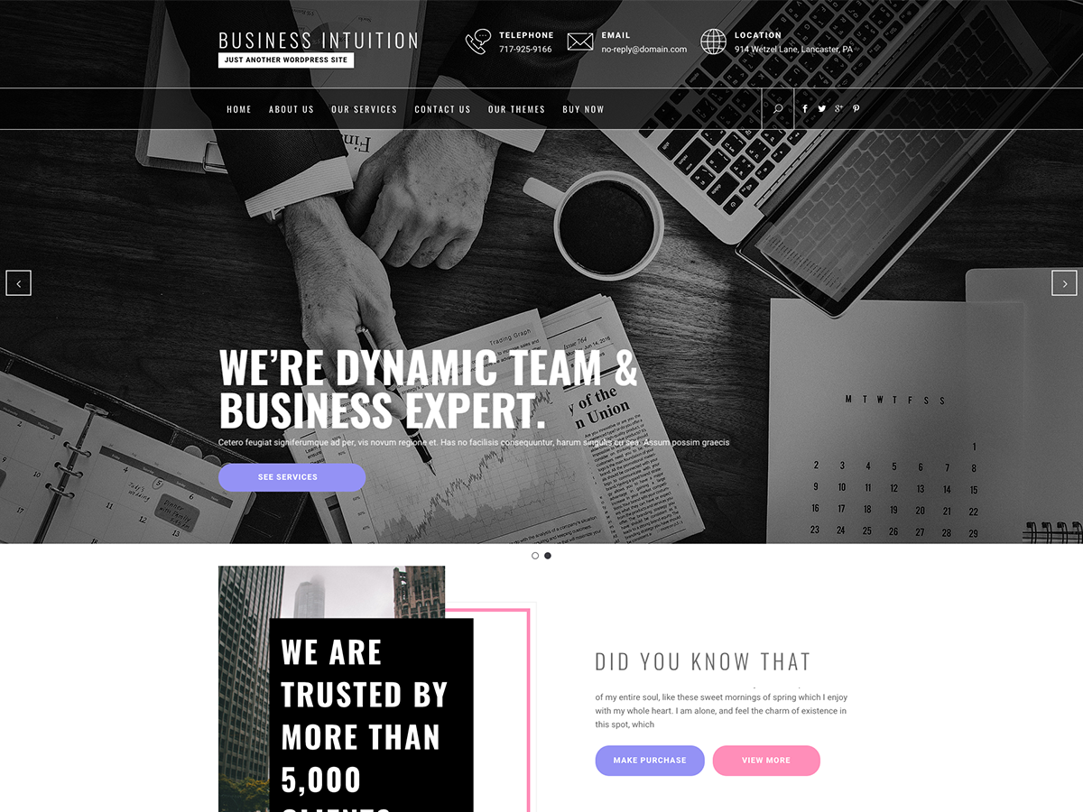Business Intuition Download Free Wordpress Theme 2