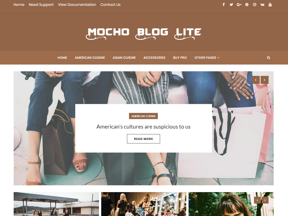 Mocho Lite Download Free Wordpress Theme 5