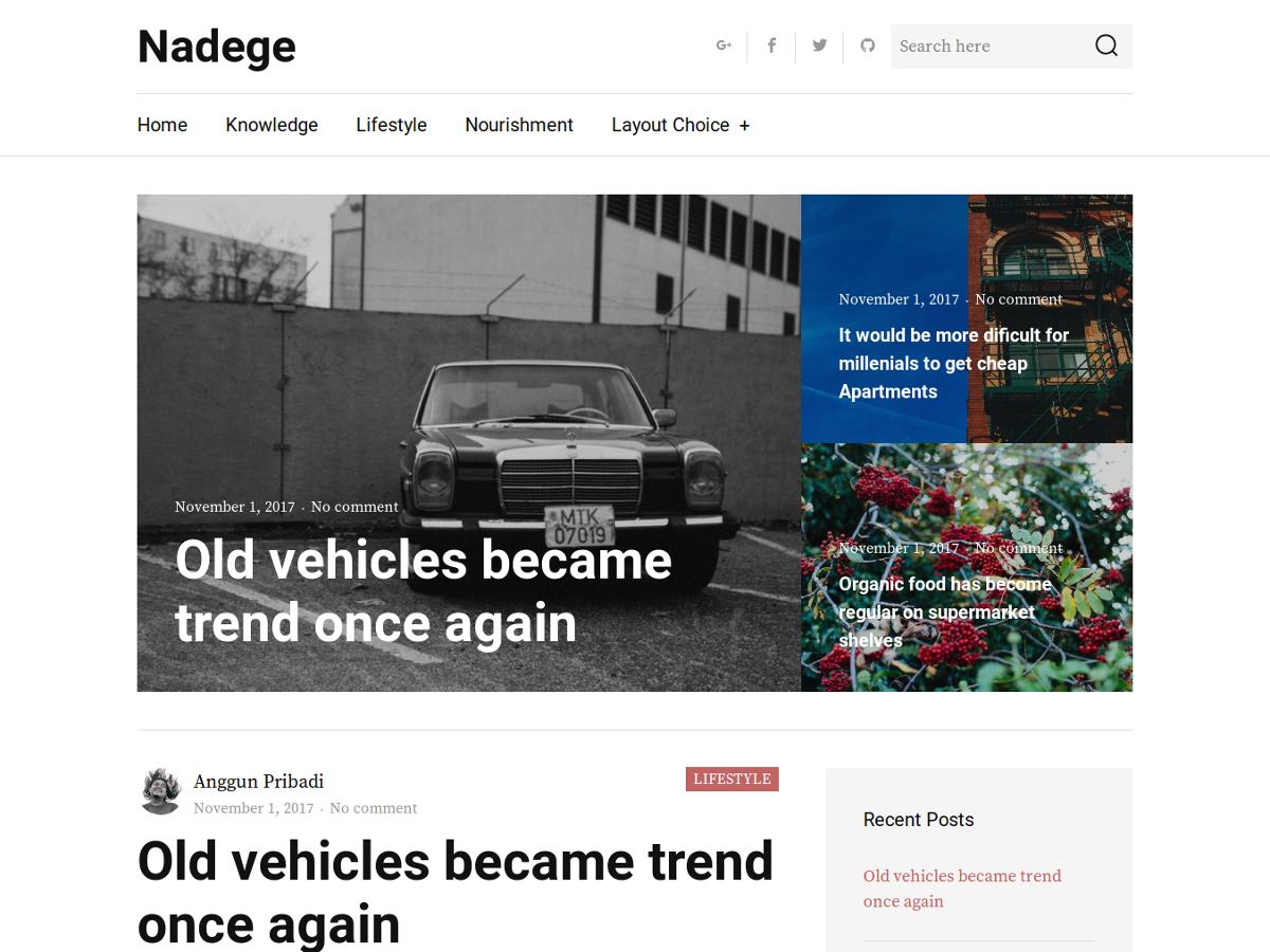Nadege Download Free Wordpress Theme 2