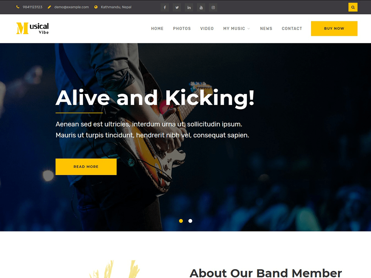 Musical Vibe Download Free Wordpress Theme 1