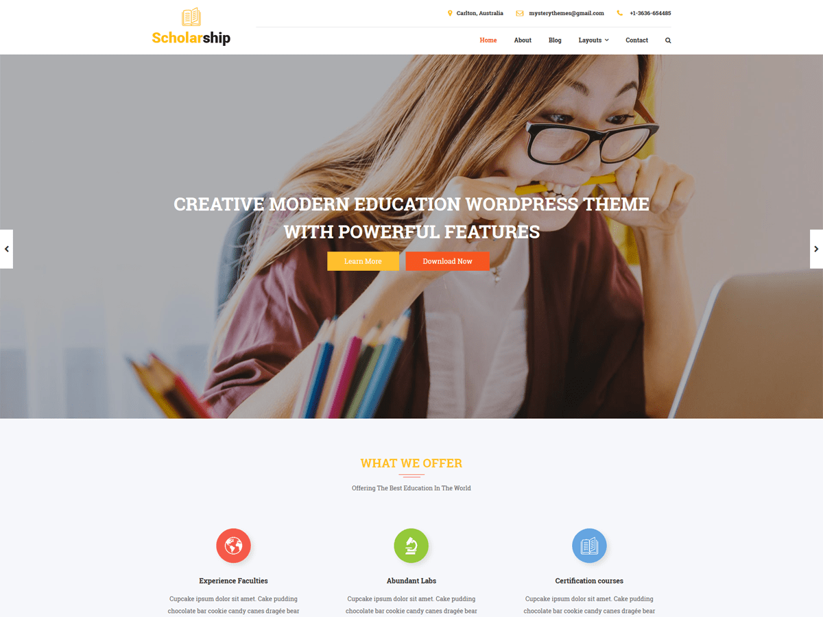 Scholarship Lite Download Free Wordpress Theme 4