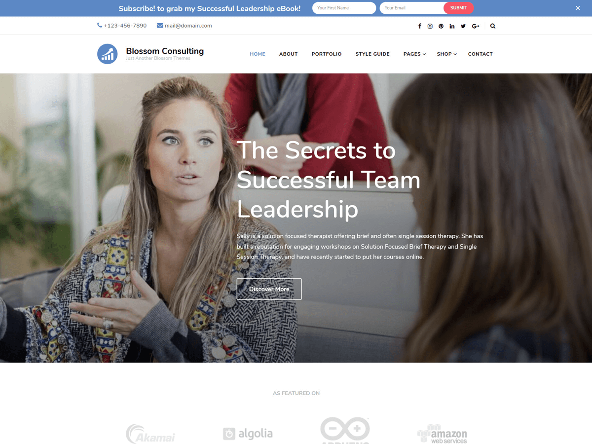 Blossom Consulting Download Free Wordpress Theme 3