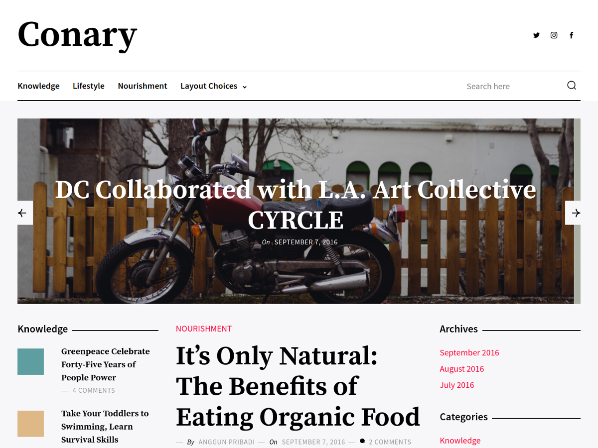 Conary Download Free Wordpress Theme 5