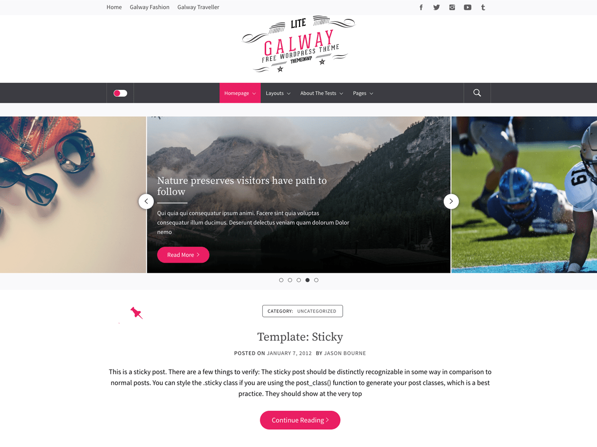 Galway Lite Download Free Wordpress Theme 5