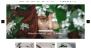 Blossom Chic Download Free WordPress Theme