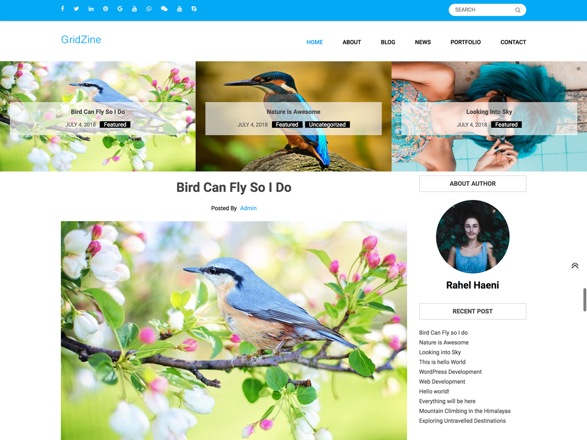 Gridzine Download Free Wordpress Theme 1