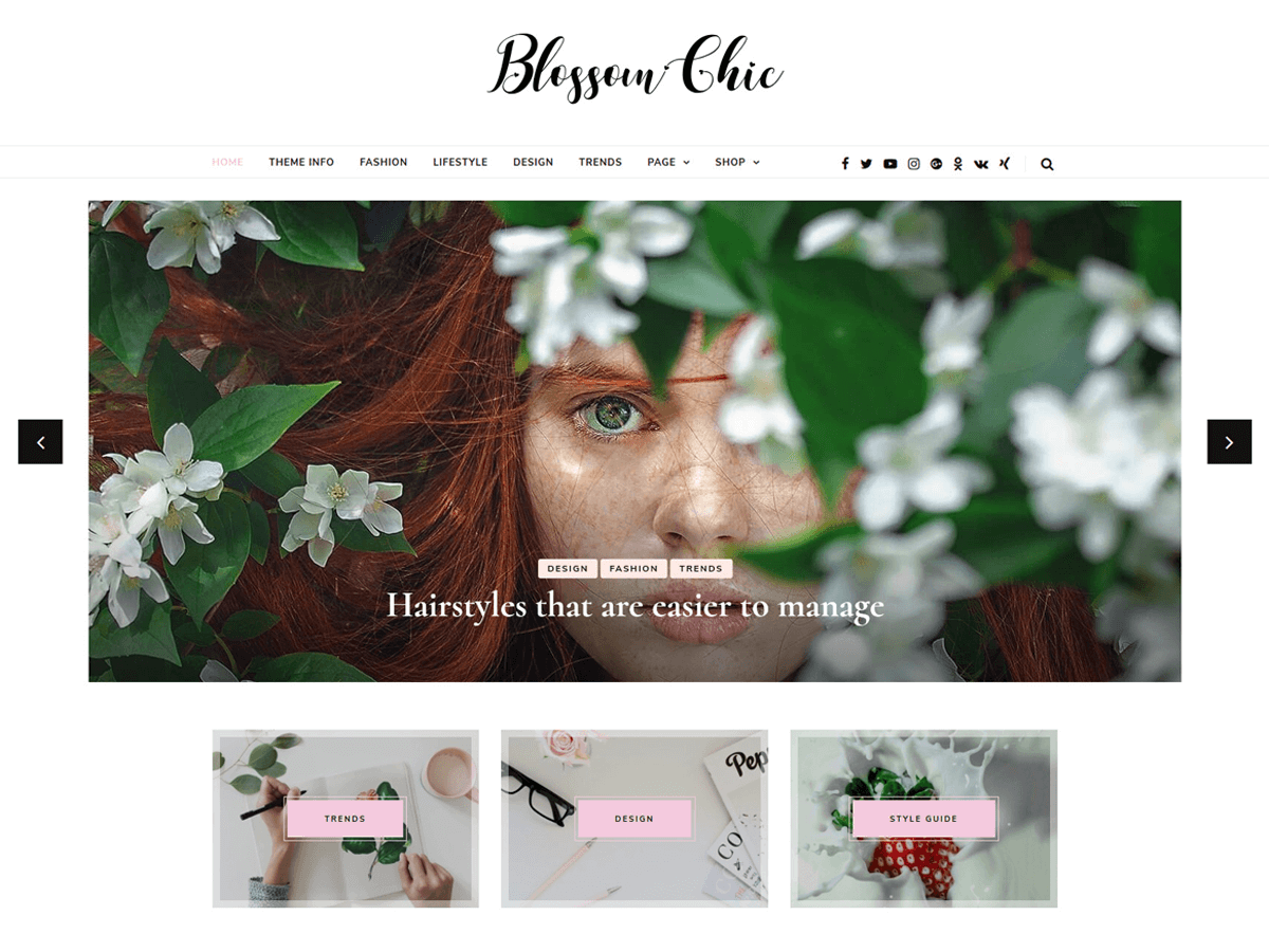 Blossom Chic Download Free Wordpress Theme 1